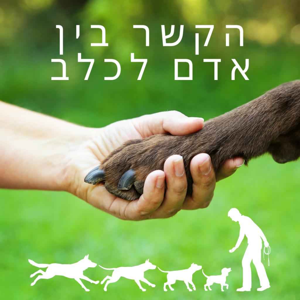הקשר בין אדם לכלב
